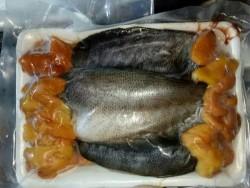 Cá sặc trứng_Khay 500g